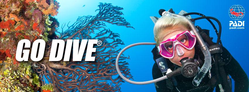 DVL Scuba Diver