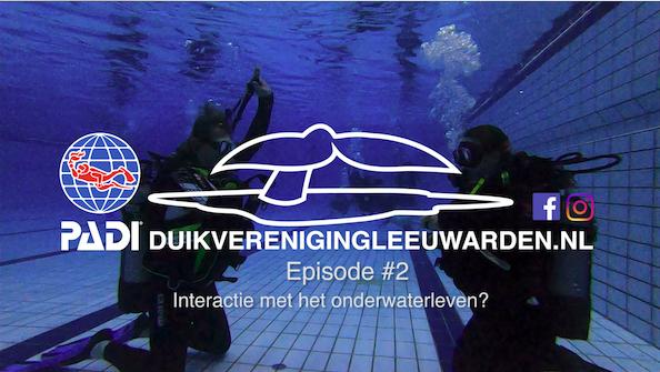 Interactie met onderwaterleven?